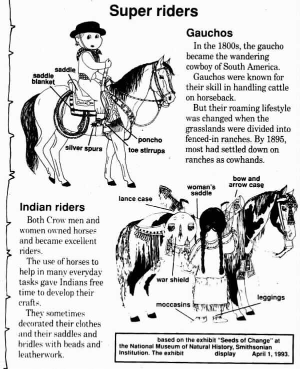 horse history facts