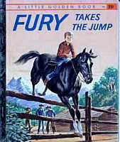 image Fury book 1