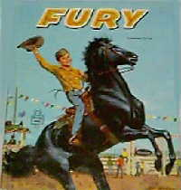 image Fury book 4