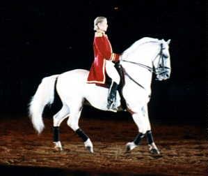 horse image 1