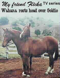 image Wahana and Goldie