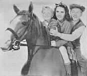 image cast of National Velvet