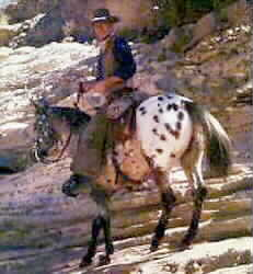 John Wayne riding Appaloosa