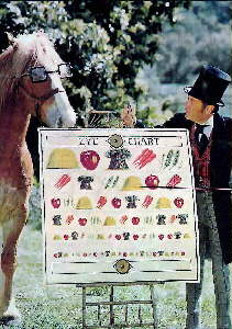Rex Harrison and horse in movie Dr. Doolittle
