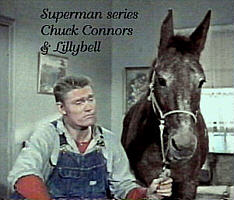 image mule and Chuck Connors