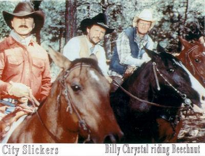 Julia Roberts Runaway Bride Horse